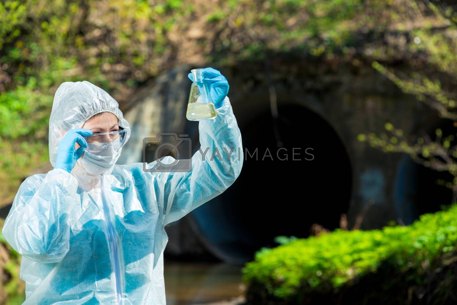 Ecologist explores the water from the river near the sewer