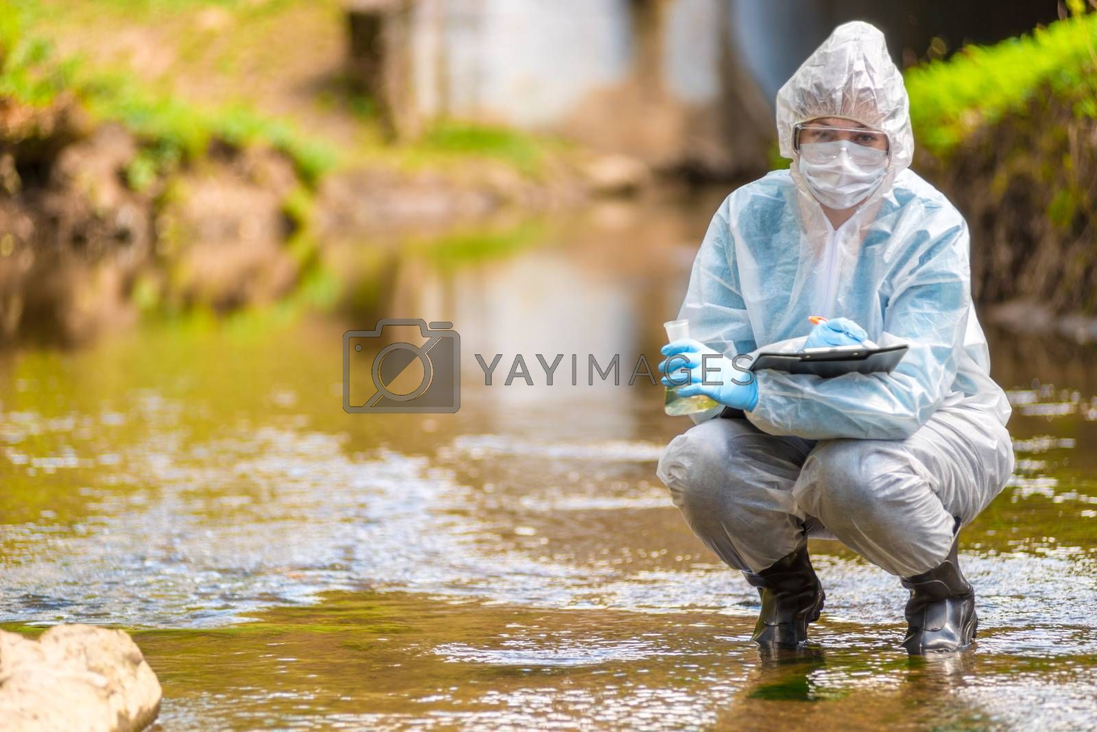 environmental disaster, the profession of an ecologist scientist portrait while working