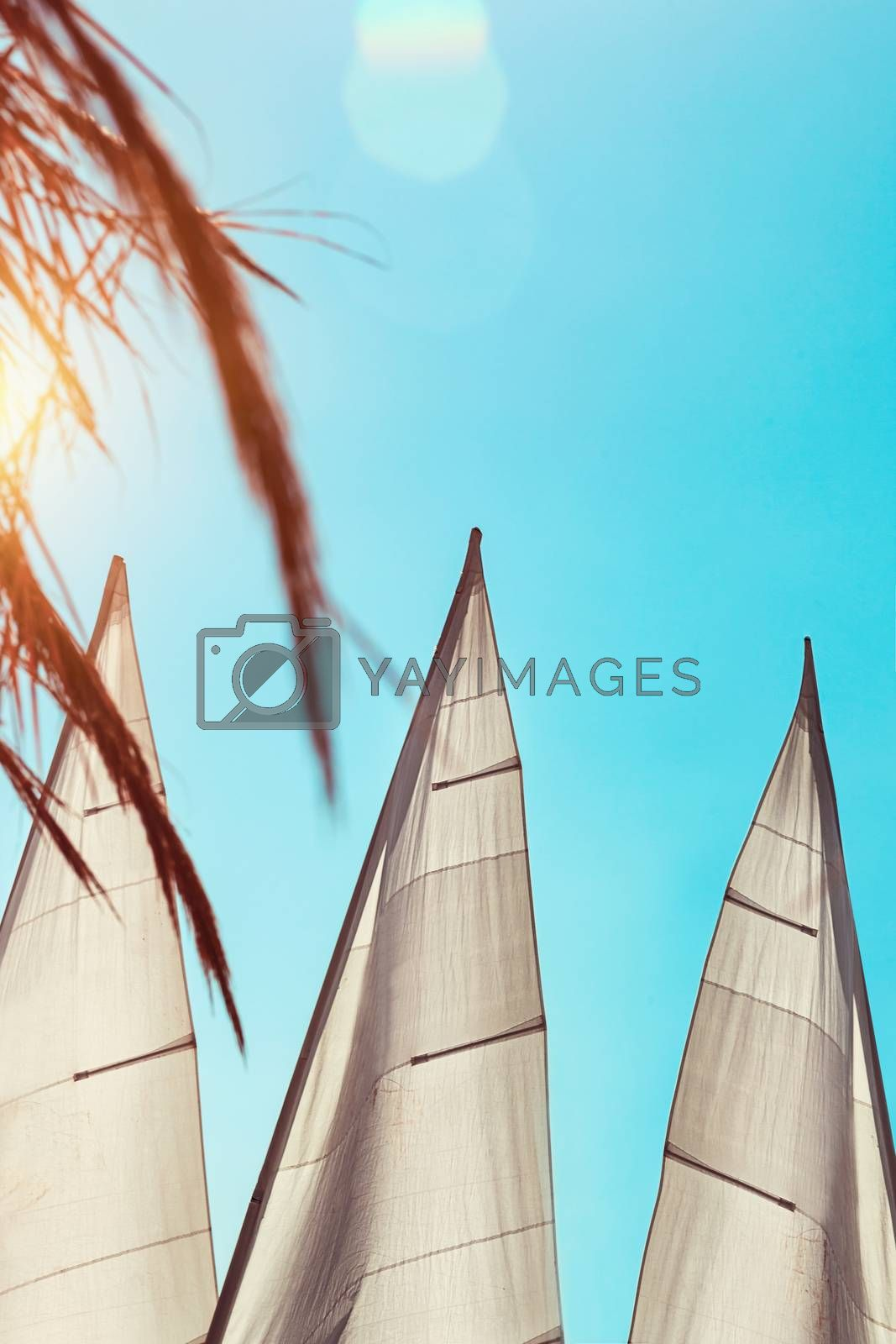 Summer vacation background, photo of a sails over blue clear sky, summertime marine trip, adventure on a water transport, active holidays on the sea