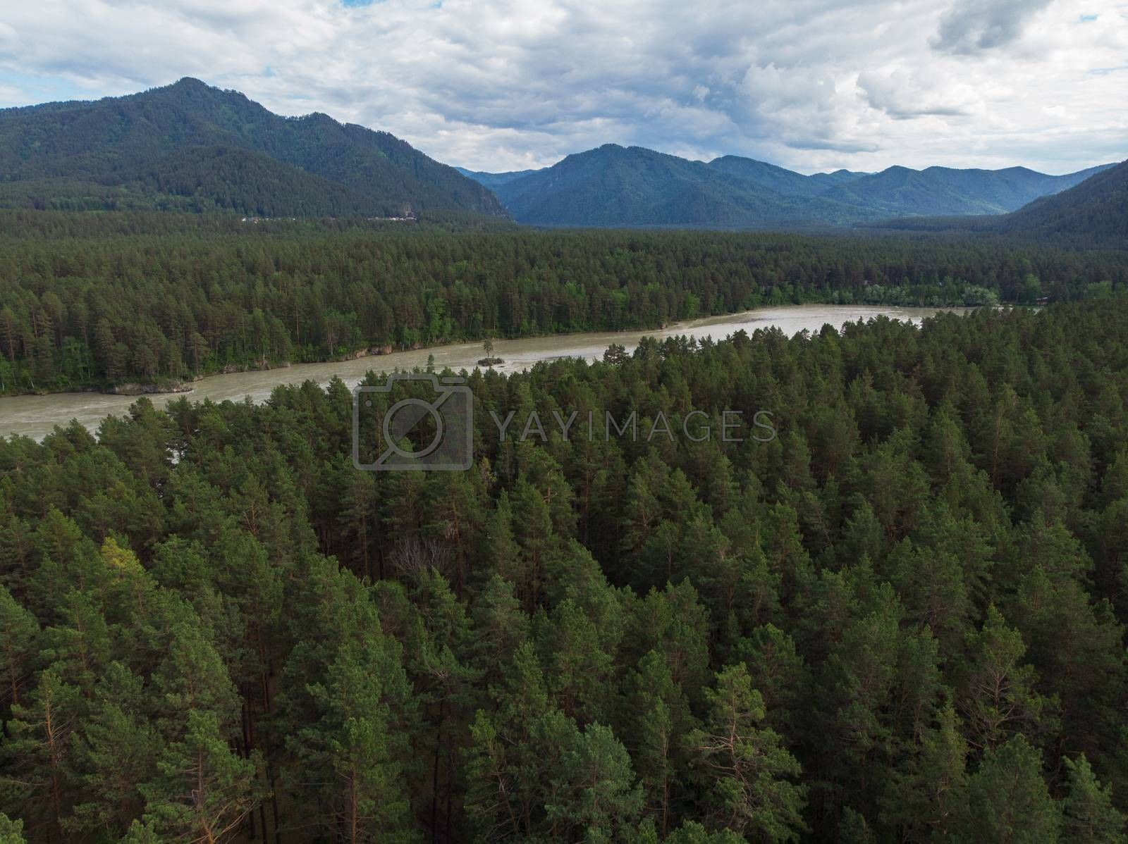 Aerial view of Katun river, in Altai mountains