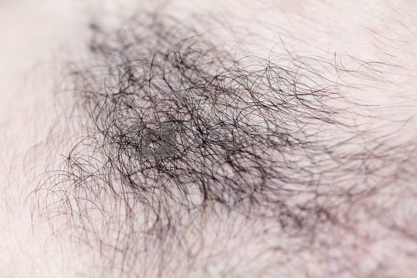 Mans hairs macro background fine art in high quality prints products fifty megapixels by BakalaeroZz Photography