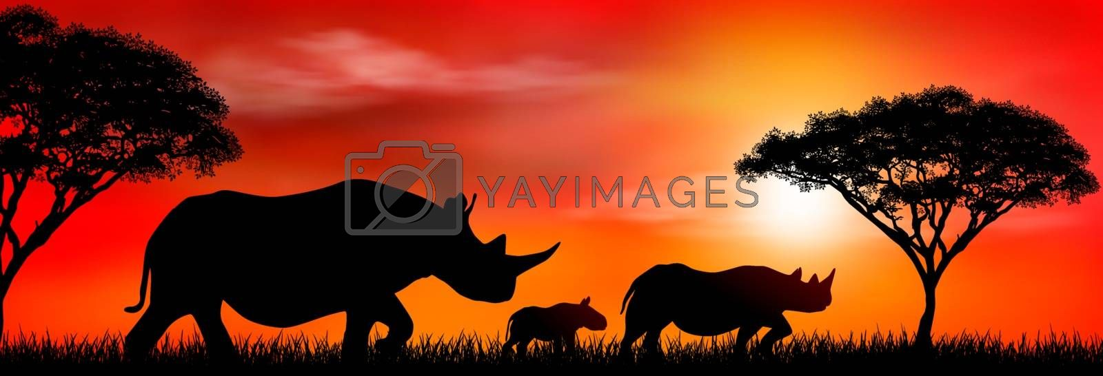 Silhouette of an African rhinos. Rhinos on the background of the sun and trees. Rhinoceros family. African wild landscape. Sunset. Wildlife of Africa.