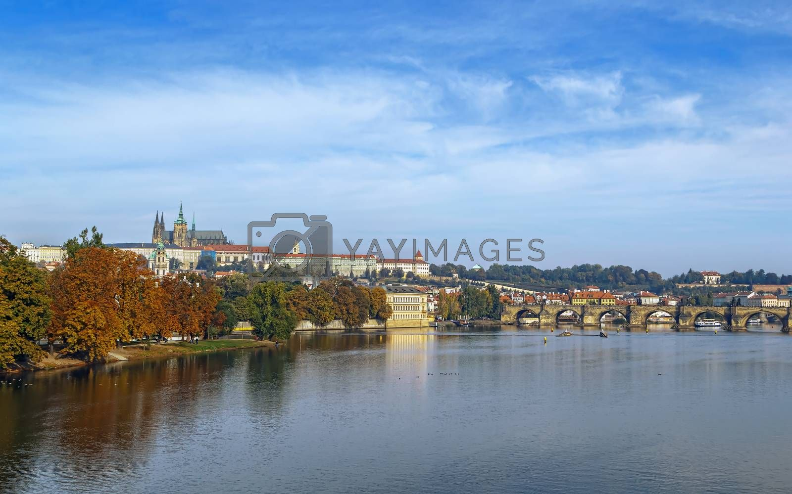 view of Prague castle by borisb17