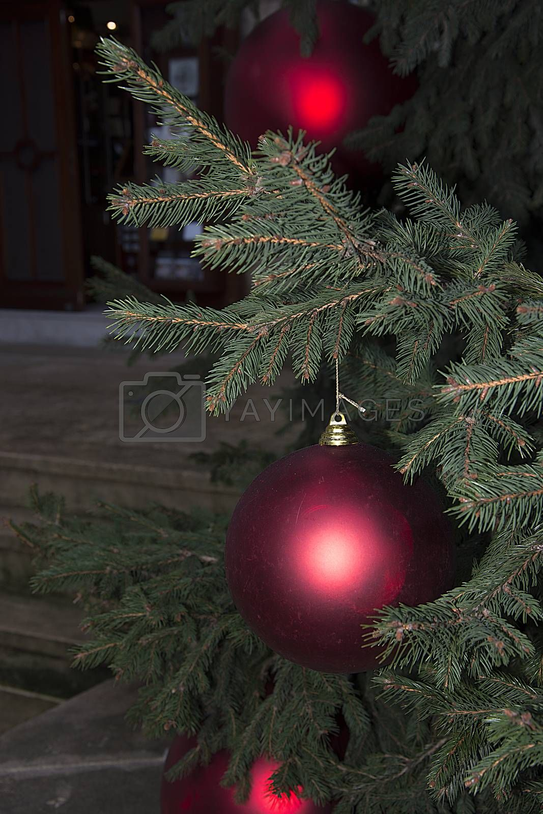 Christmas decoration by Nursel
