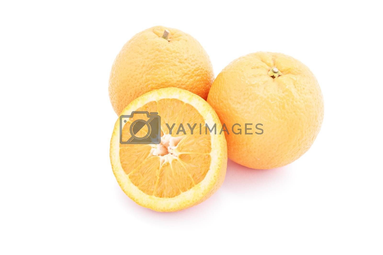Several oranges isolated on white background.