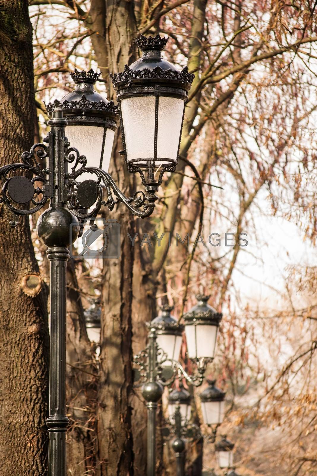 Close up shot of an array of old fashioned lantern street lights in a park.