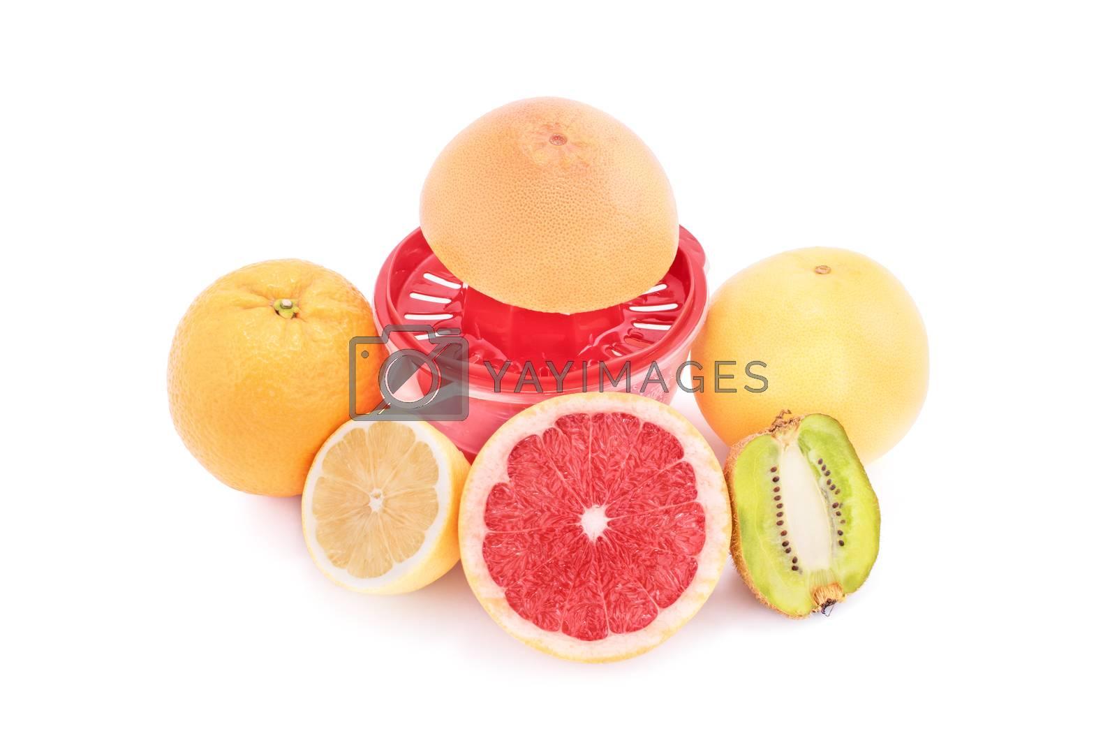 Squeezer and different fruits, isolated on white background. Orange, grapefruit, lemon and kiwi with a juice squeezer, isolated on white background.