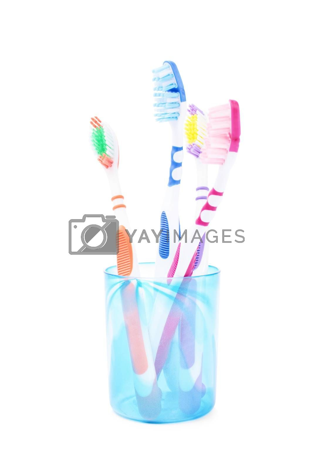 Set of family toothbrushes in a cup, isolated on white background.