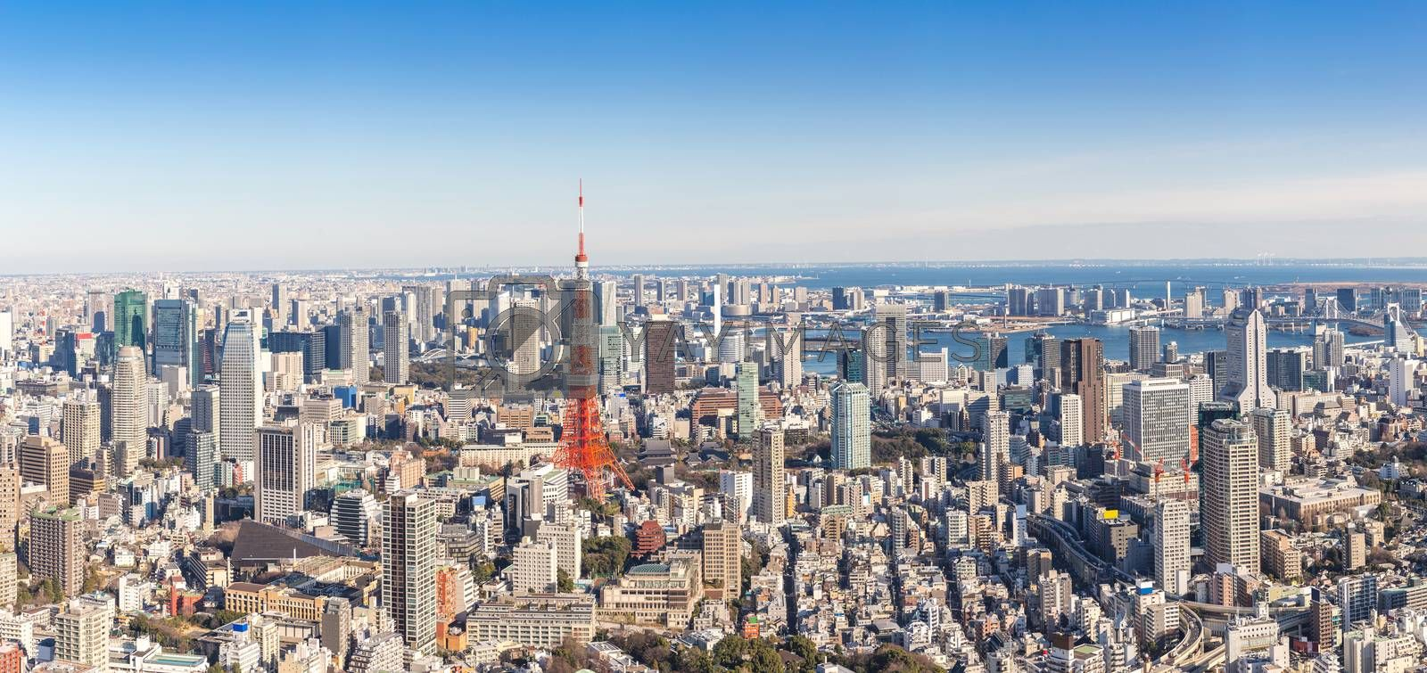 Tokyo Tower with skyline in Tokyo Japan Panorama