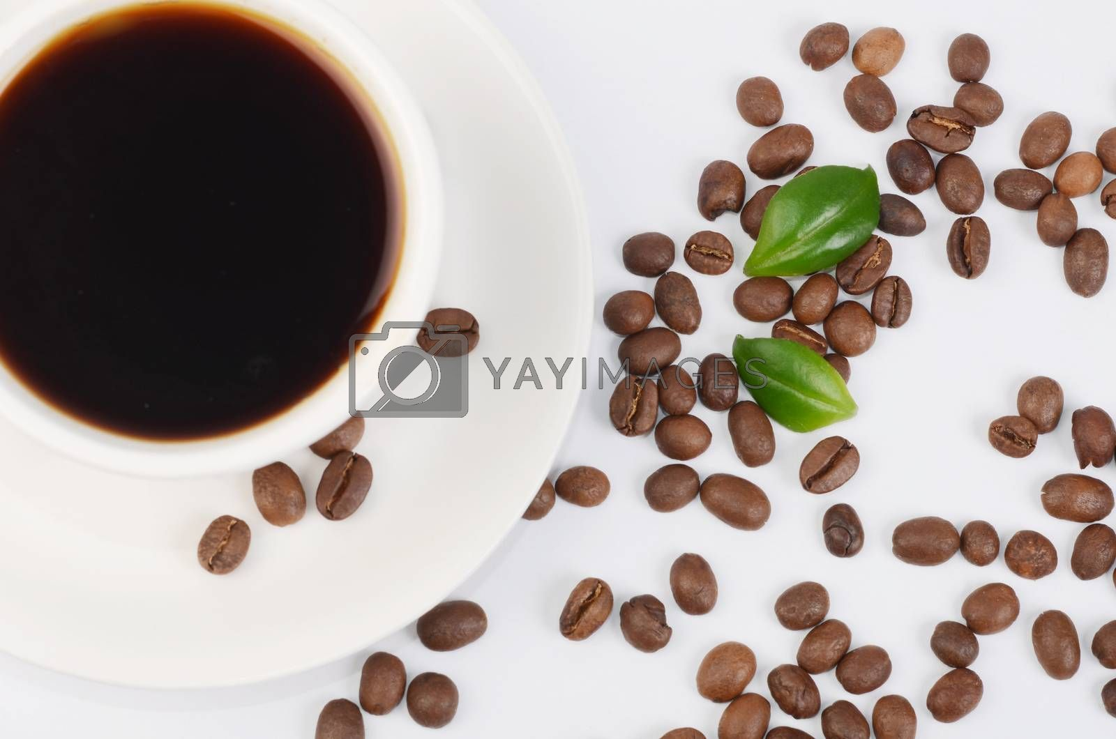 Royalty free image of Coffee beans in a cup by SvetaVo