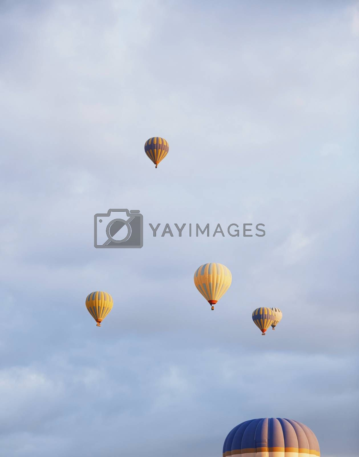 Group of air balloons flying in the sky by Novic