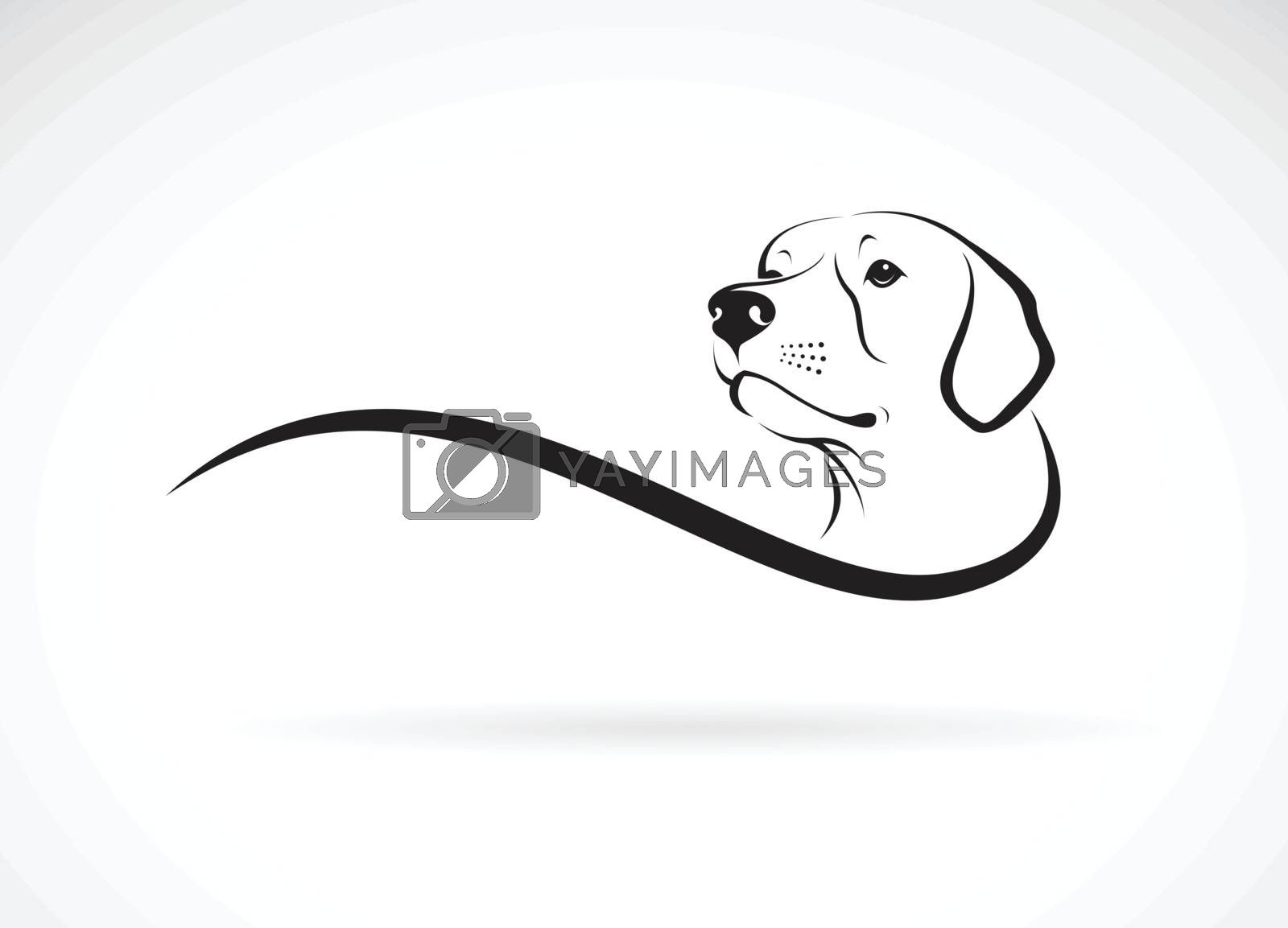 Vector of a dog head(Labrador Retriever) on white background., Pet. Animals. Dogs logo or icon. Easy editable layered vector illustration.