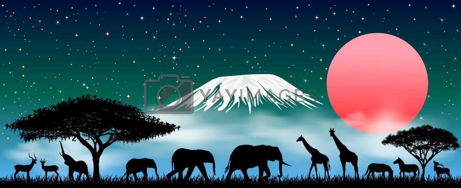 Silhouettes of wild animals of the African savanna. African animals at night against the backdrop of Mount Kilimanjaro. Starry sky and clouds.