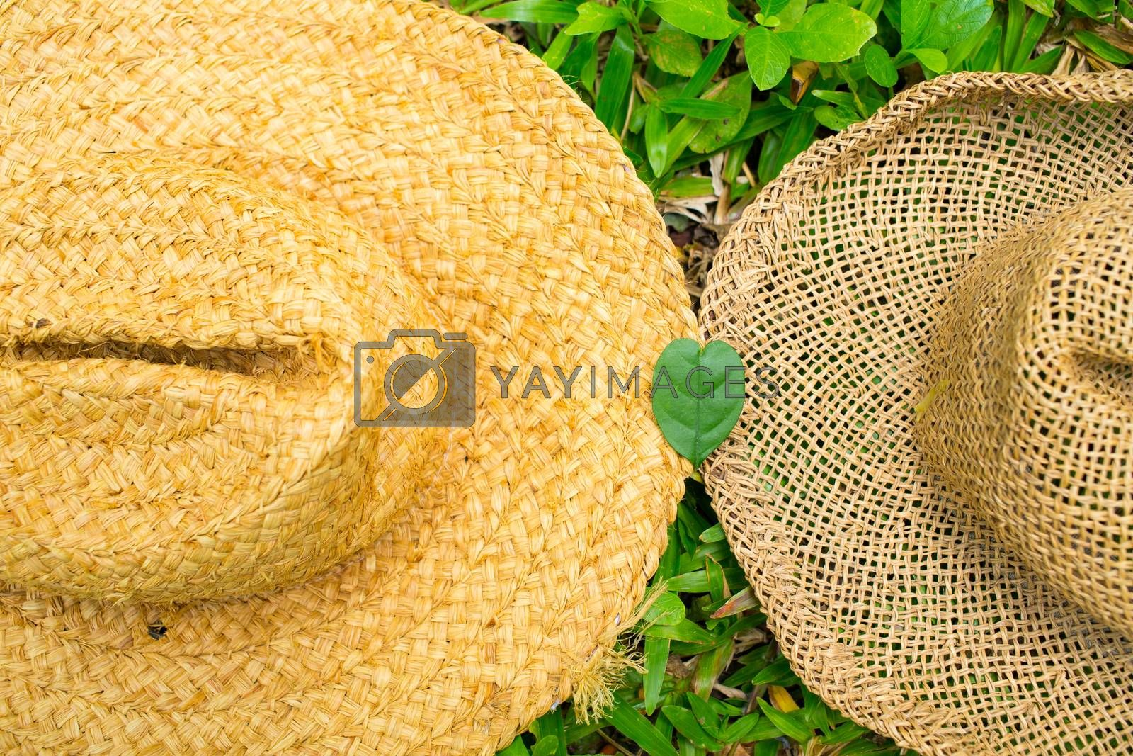 Heart leaf shape on two hats in the garden, Close up
