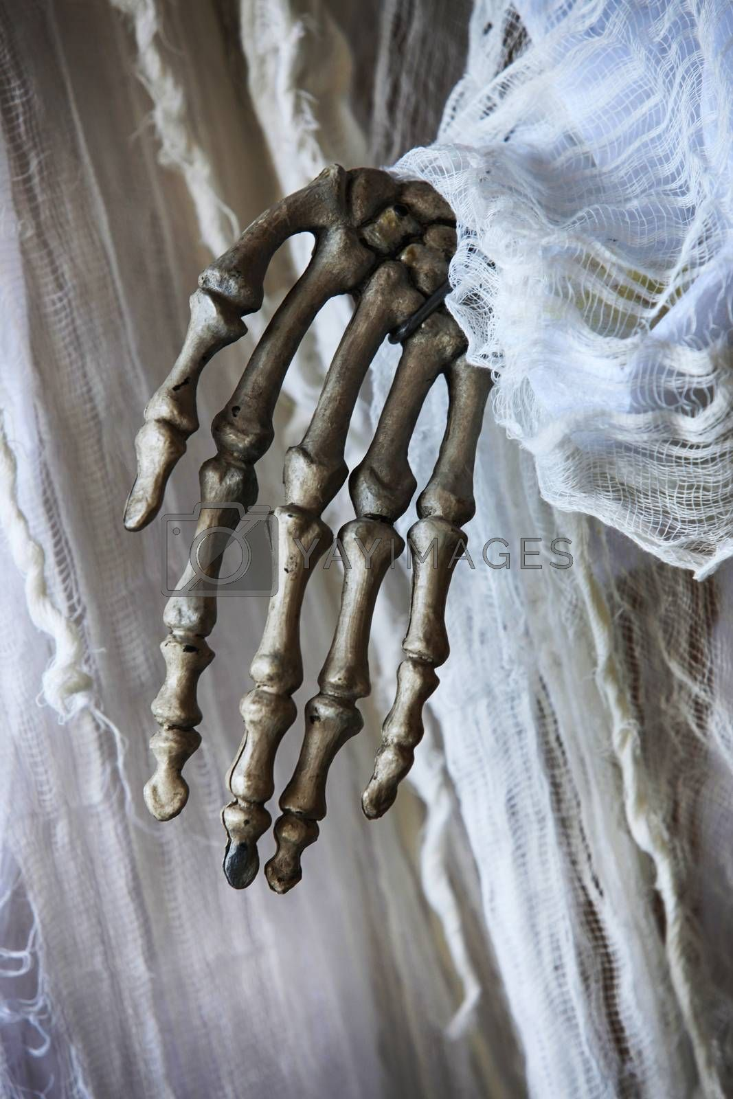 Skeleton hand on the background of an old white dress by friday