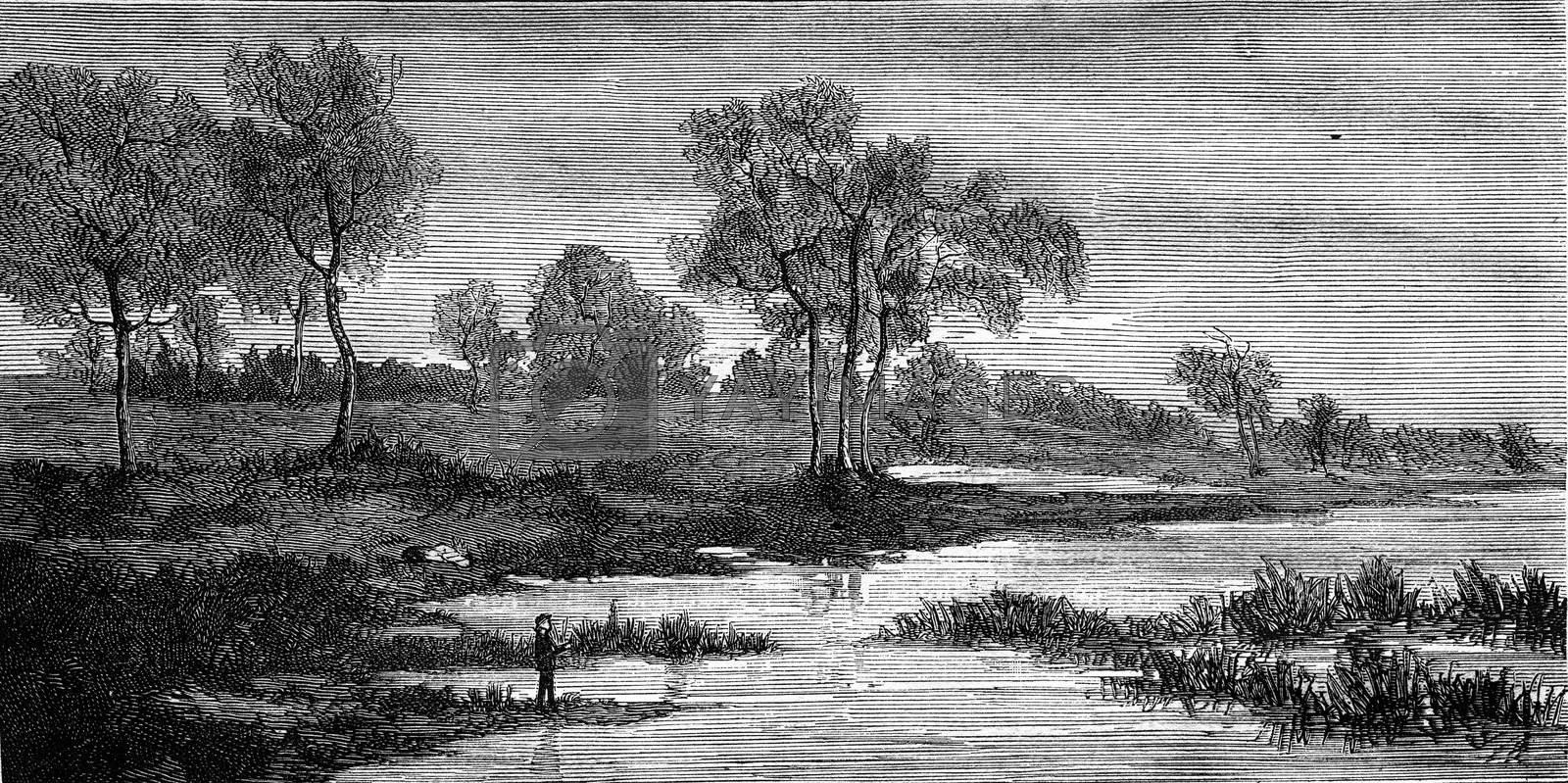 Landscapes by Fritz Van de Kerchove, vintage engraved illustration. Magasin Pittoresque 1876.