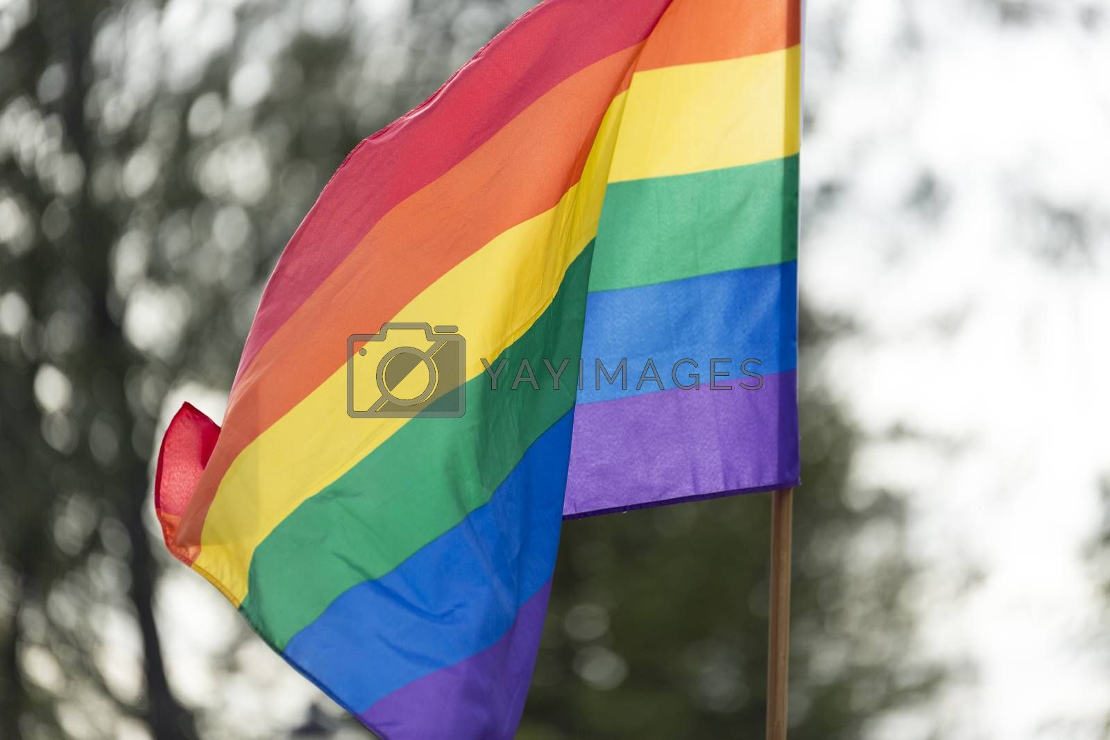 Royalty free image of Rainbow Flag waving in the wind by Emmoth
