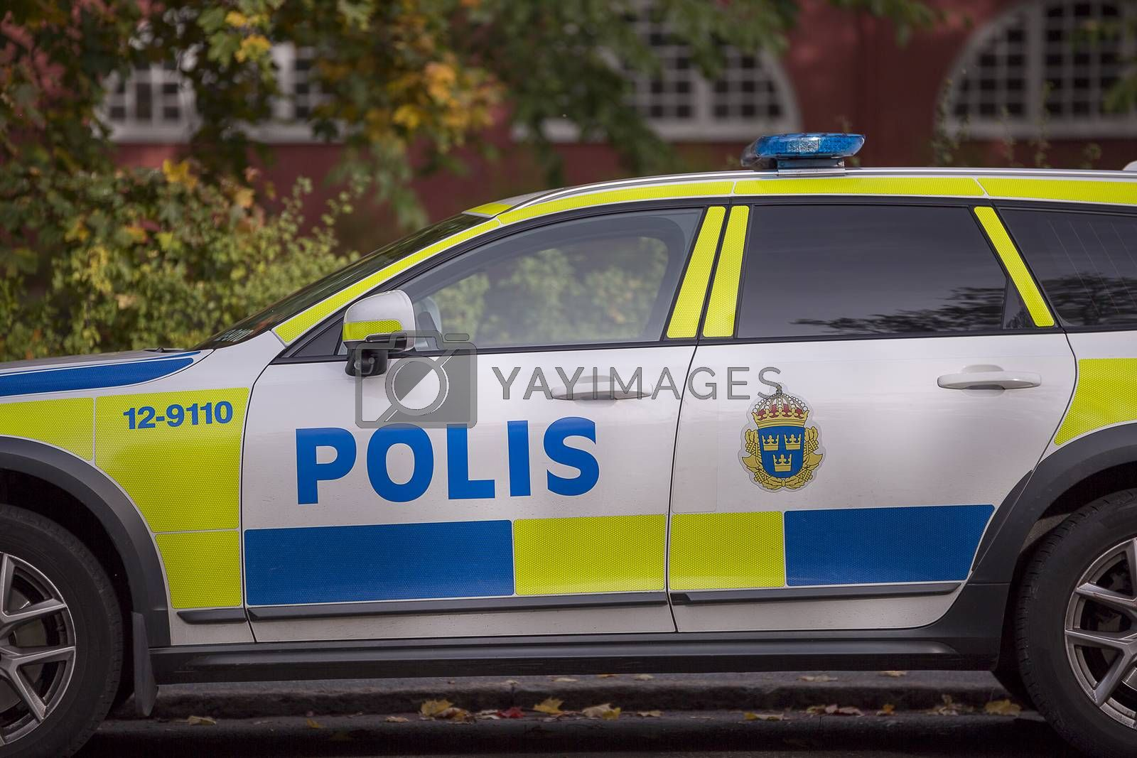Swedish Police Car Parked with autumn leaves.