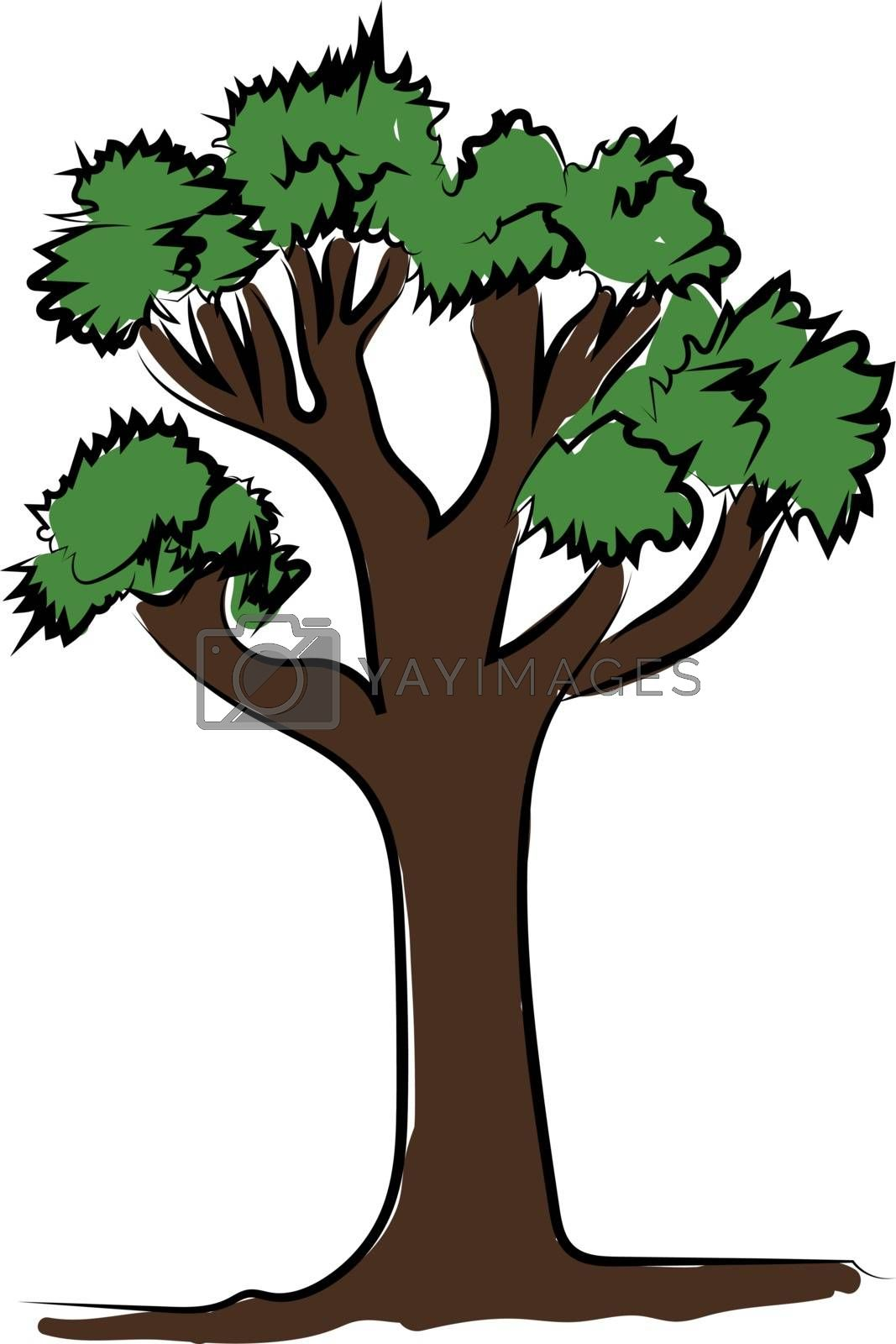 Tall tree with green leaves, illustration, vector on white background.