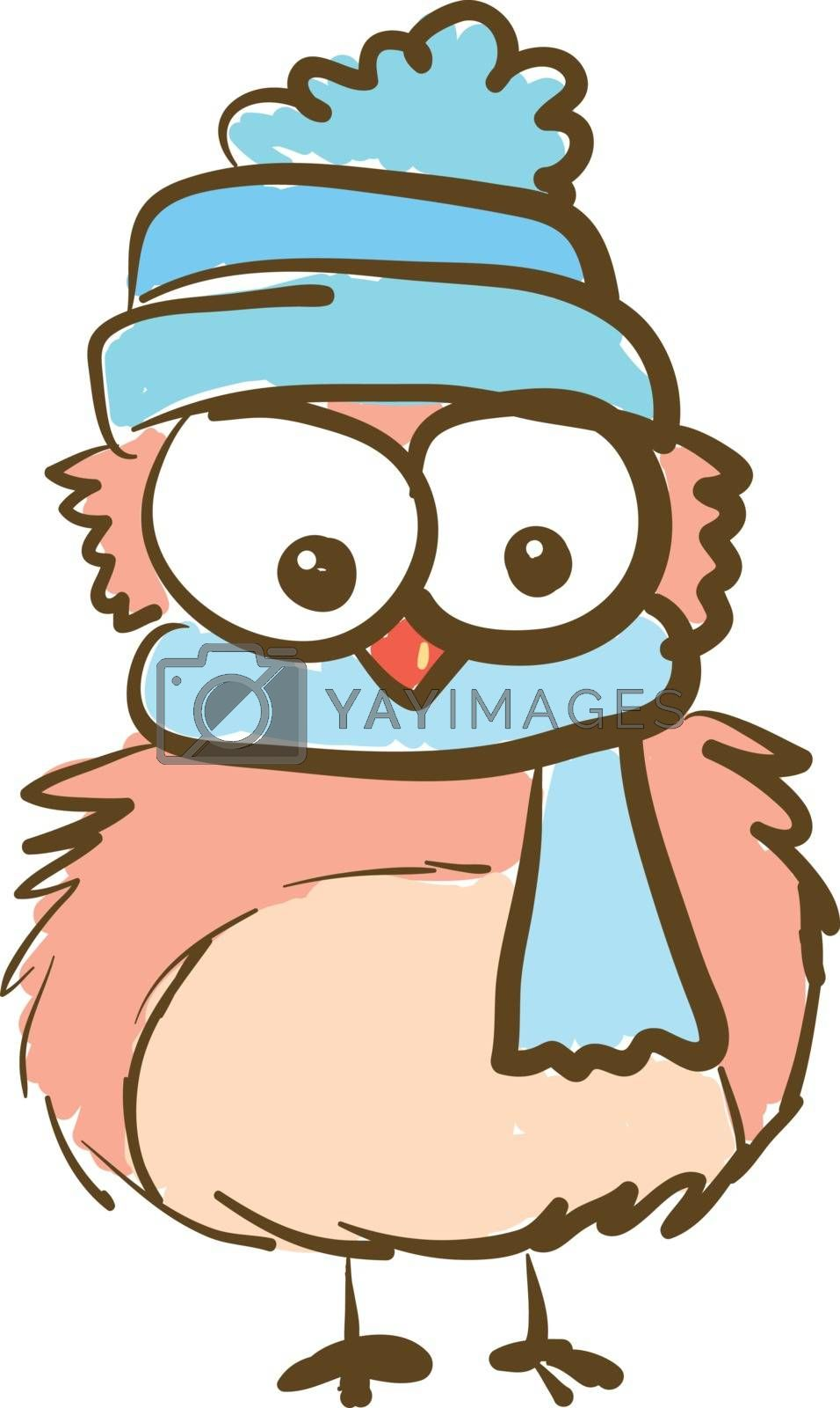 A cartoon of an owl with huge eyes wearing a blue cap and a scarf vector color drawing or illustration