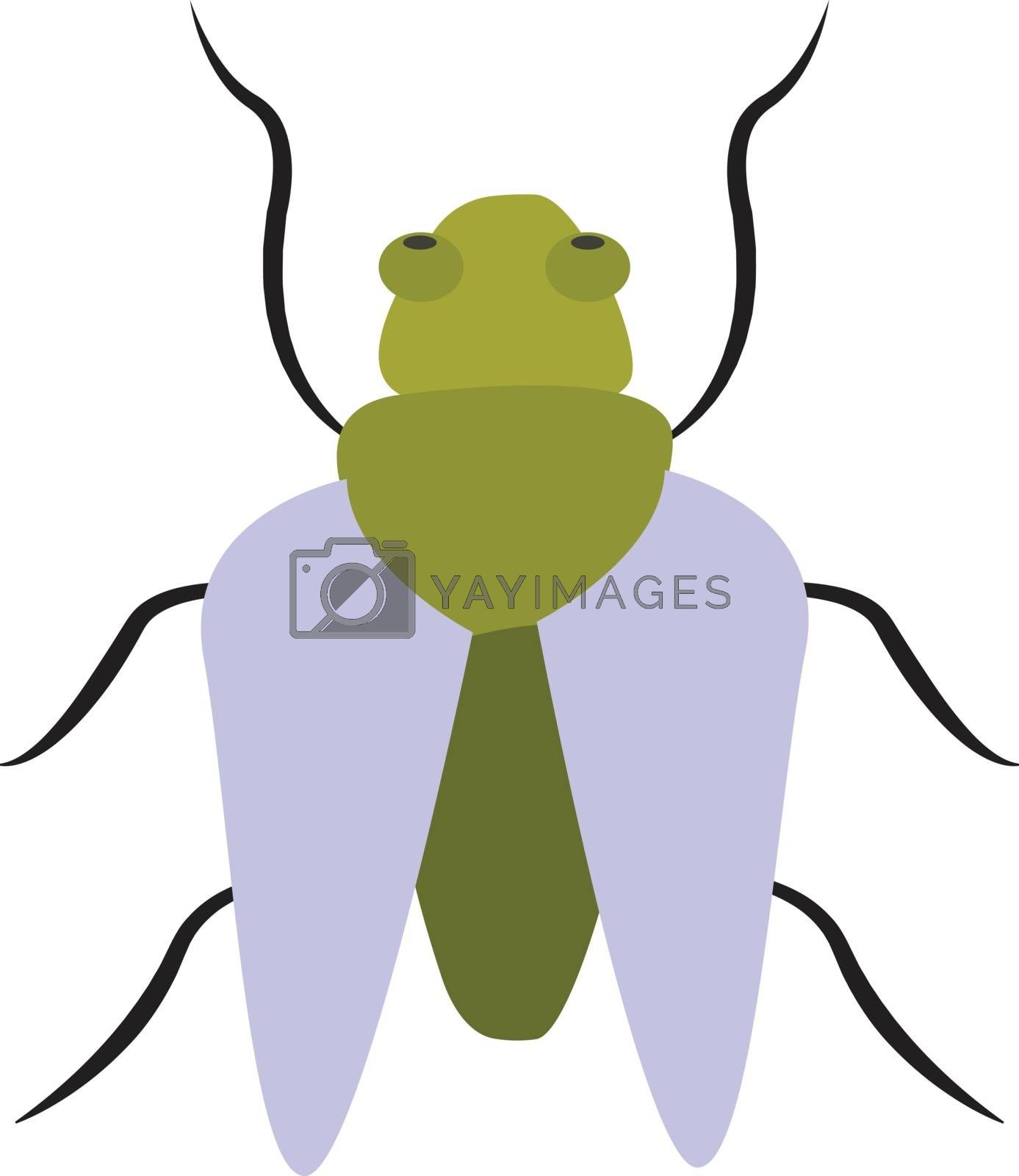 Royalty free image of Clipart of a light green bug vector or color illustration by Morphart