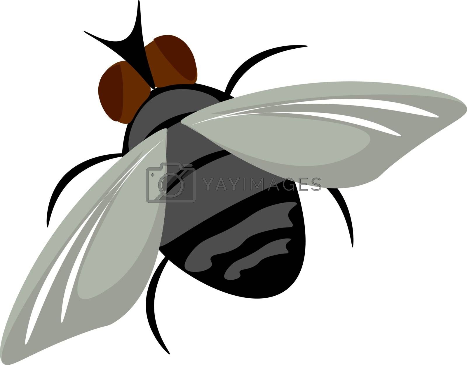 Royalty free image of Painting of a brown housefly set on isolated white background vi by Morphart