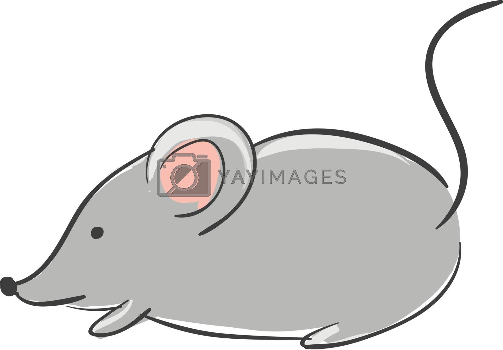 Royalty free image of Cartoon grey mouse/Cute little cartoon mouse vector or color ill by Morphart