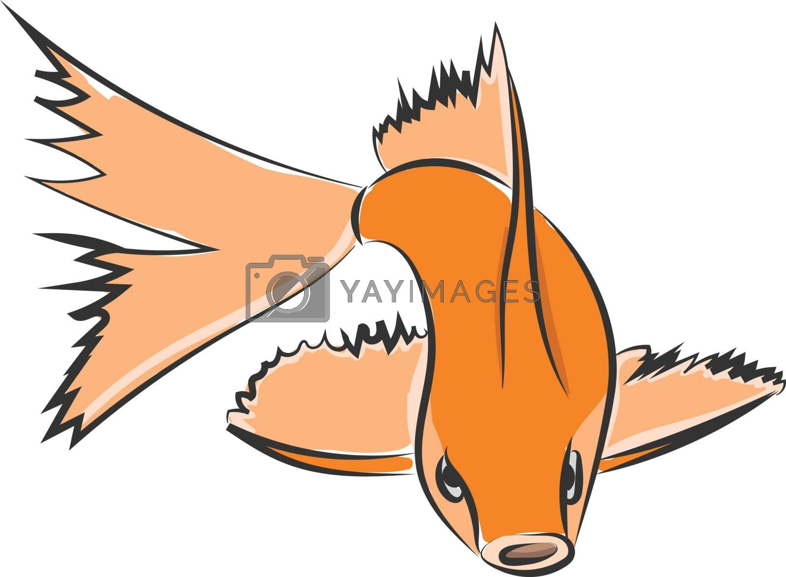 Royalty free image of Drawing of an orange fish vector or color illustration by Morphart