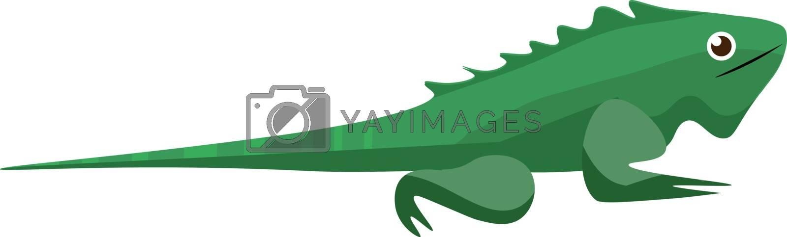 Royalty free image of A crawling green iguana/ Iguana iguana/wild reptile vector or co by Morphart
