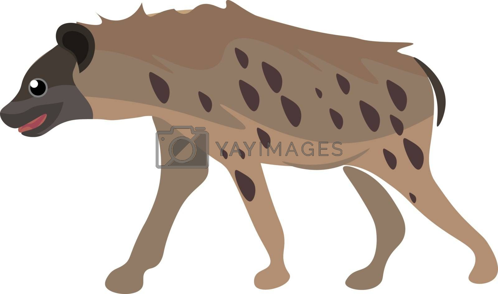 Royalty free image of A portrait of a hyena set on isolated white background viewed fr by Morphart