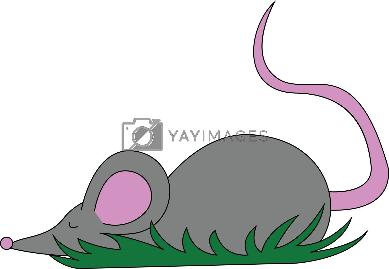 Royalty free image of Drawing of a cute little grey mouse set on isolated white backgr by Morphart