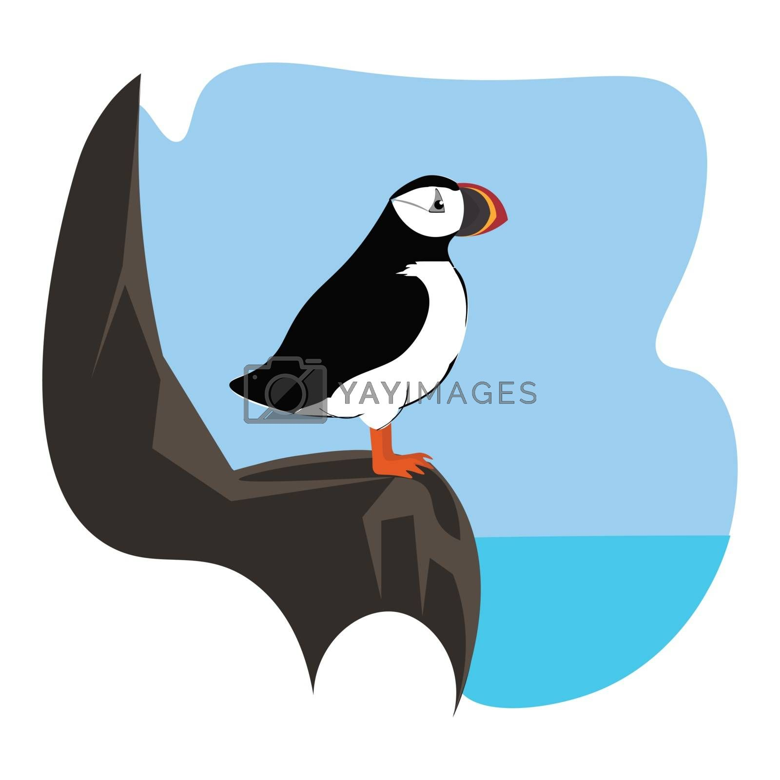 Royalty free image of Portrait of a puffin bird perched on the rock over a background  by Morphart