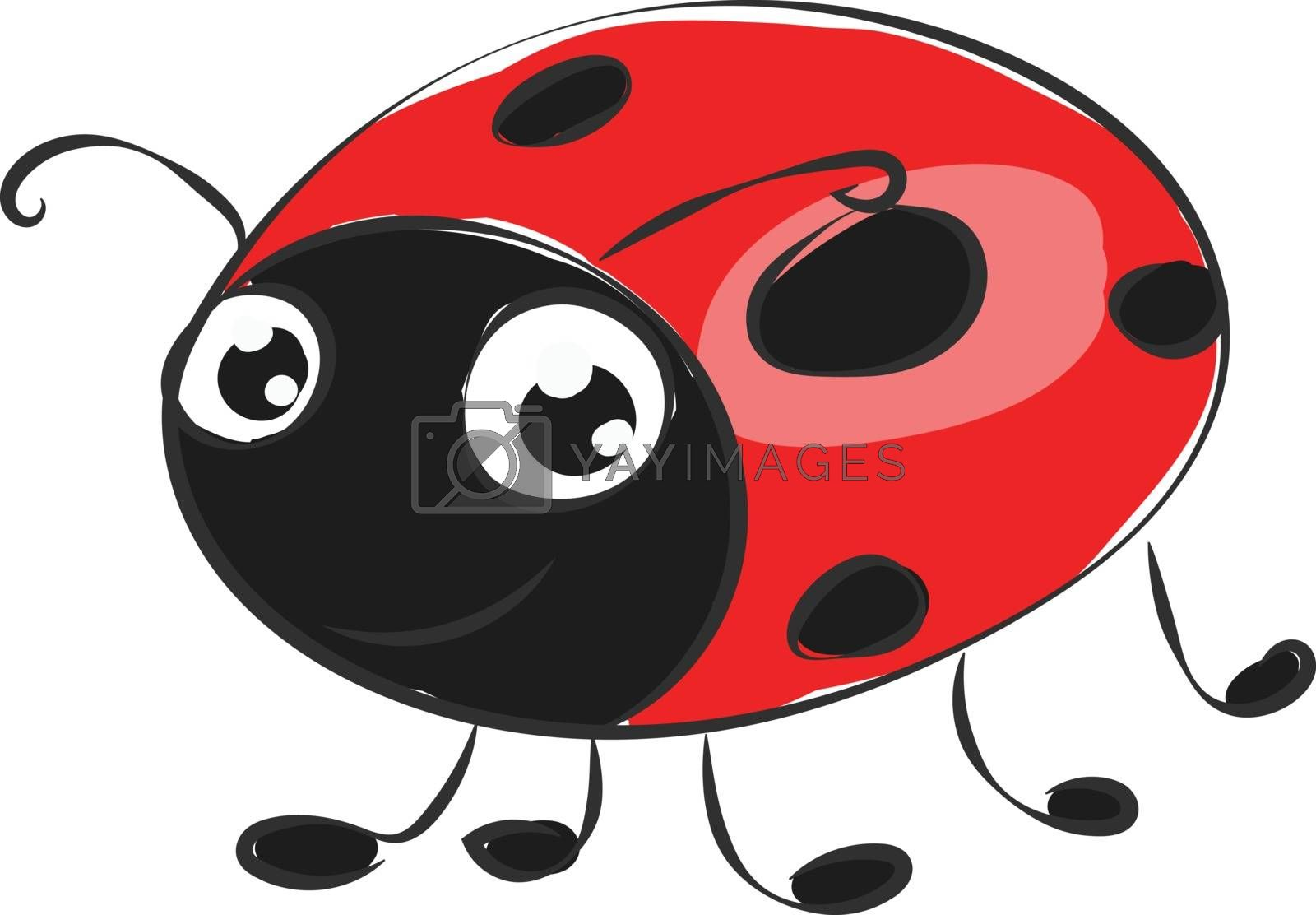 Royalty free image of Cartoon cute little ladybird vector or color illustration by Morphart