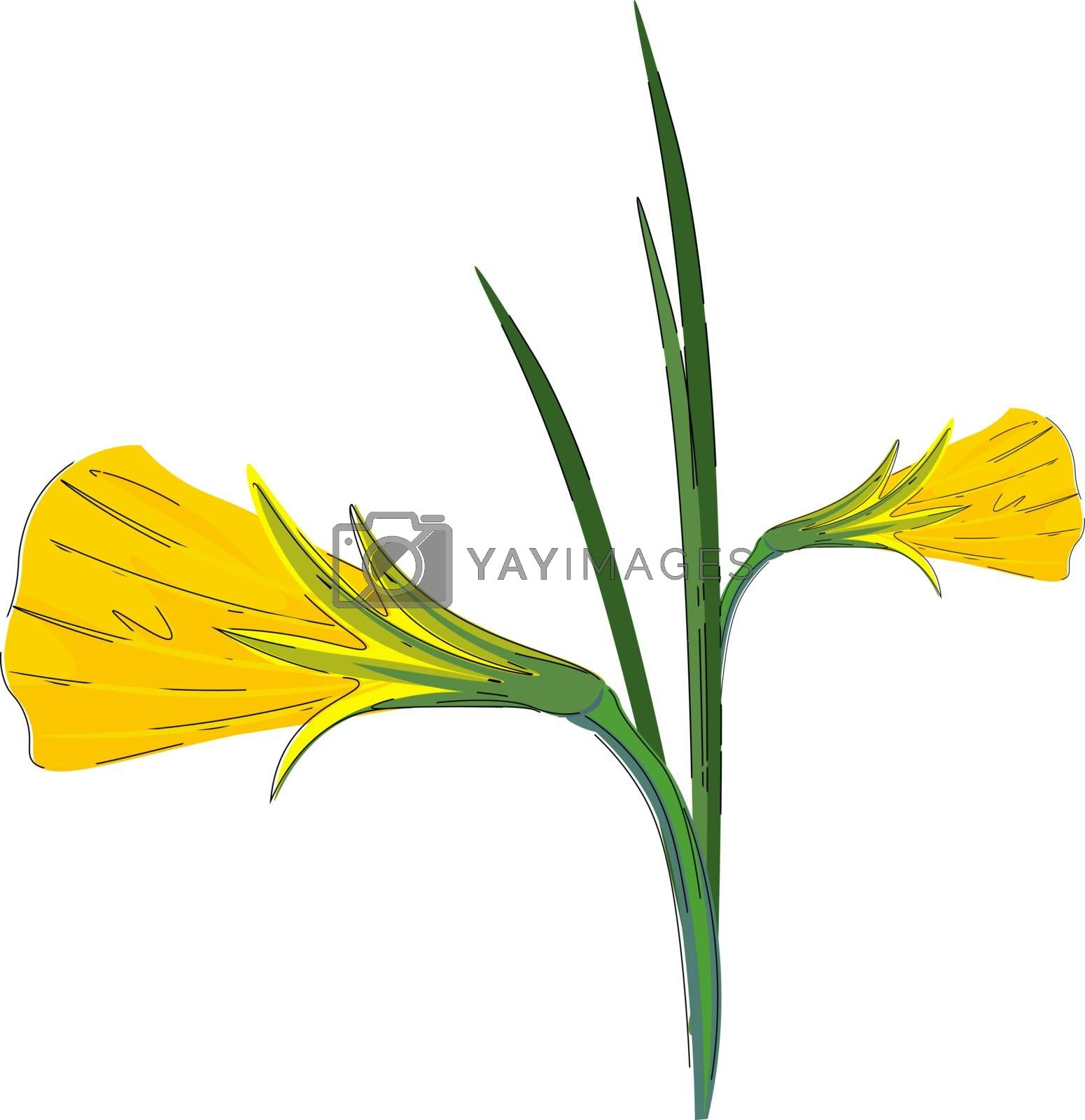 Royalty free image of Clipart of a plant with flowers blossomed as golden bells vector by Morphart