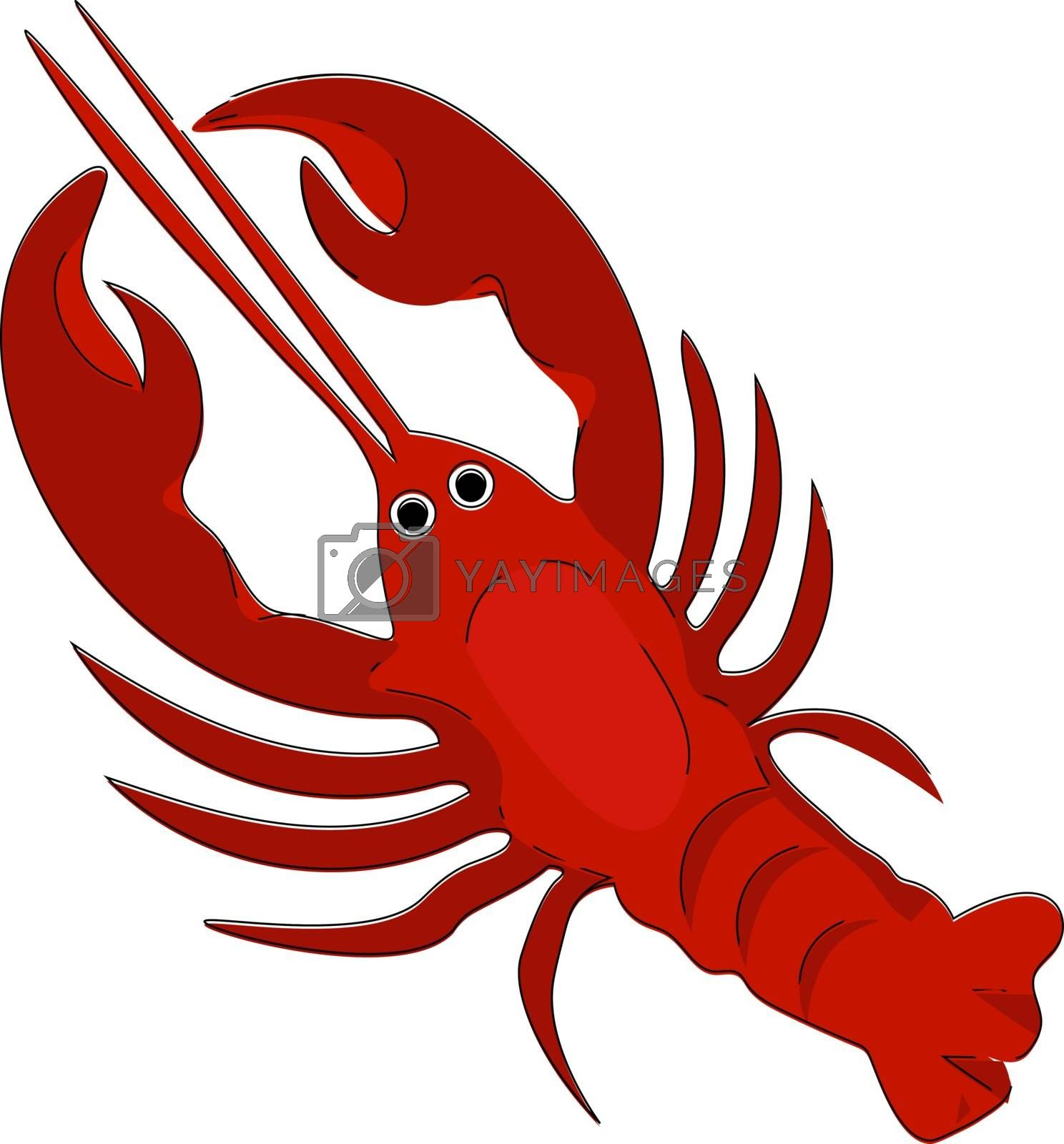 Royalty free image of Clipart of a red-colored lobster vector or color illustration by Morphart