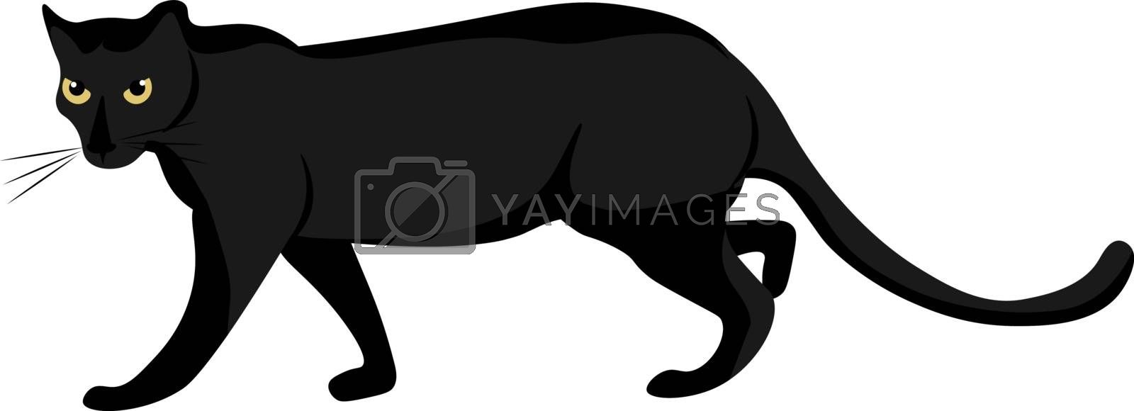 Royalty free image of Cartoon panther set on isolated white background viewed from the by Morphart