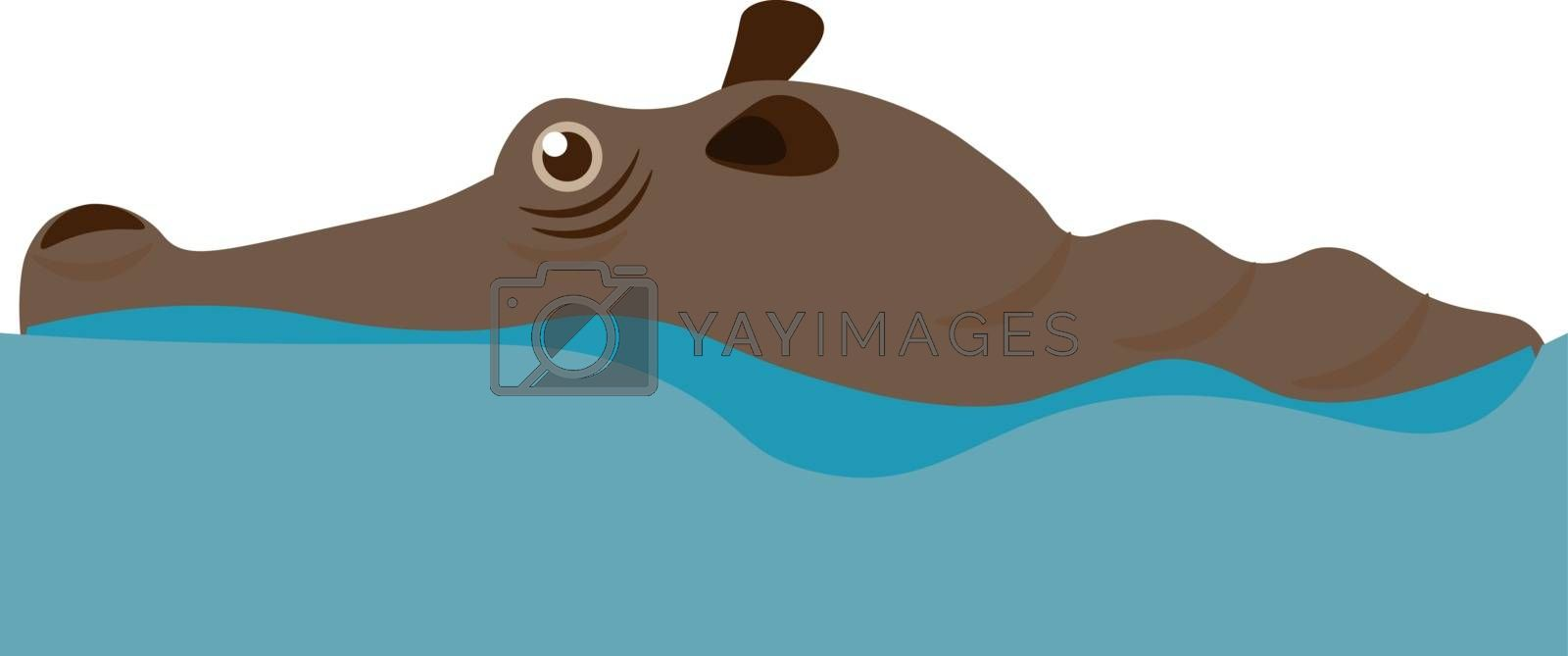 Cartoon brown hippo swimming in the water of a pond looks cute  vector  color drawing or illustration