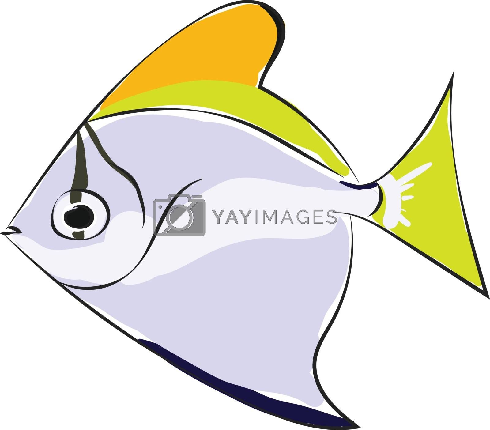 Royalty free image of Monodactylus argentus/Silver moonyfish/Silver moony/Butter bream by Morphart