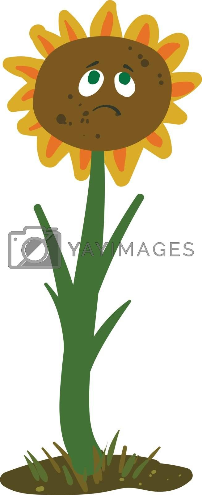Royalty free image of Emoji of a sad grey-colored sunflower bud vector or color illust by Morphart