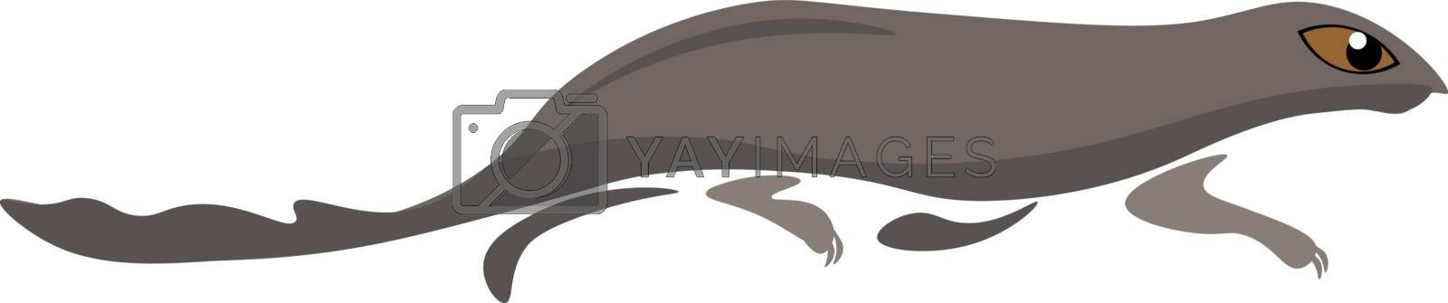 Royalty free image of Clipart of the mammal mongoose vector or color illustration by Morphart