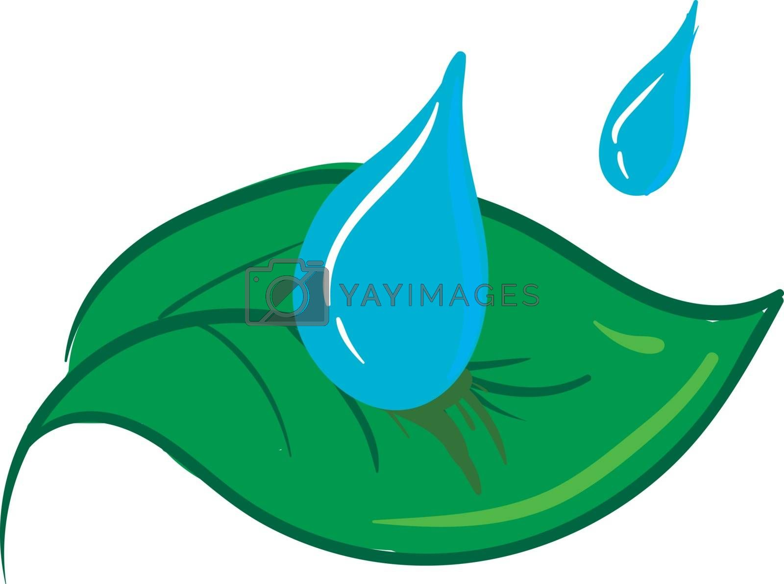 Royalty free image of Clipart of two water drops falling on a green leaf vector or col by Morphart