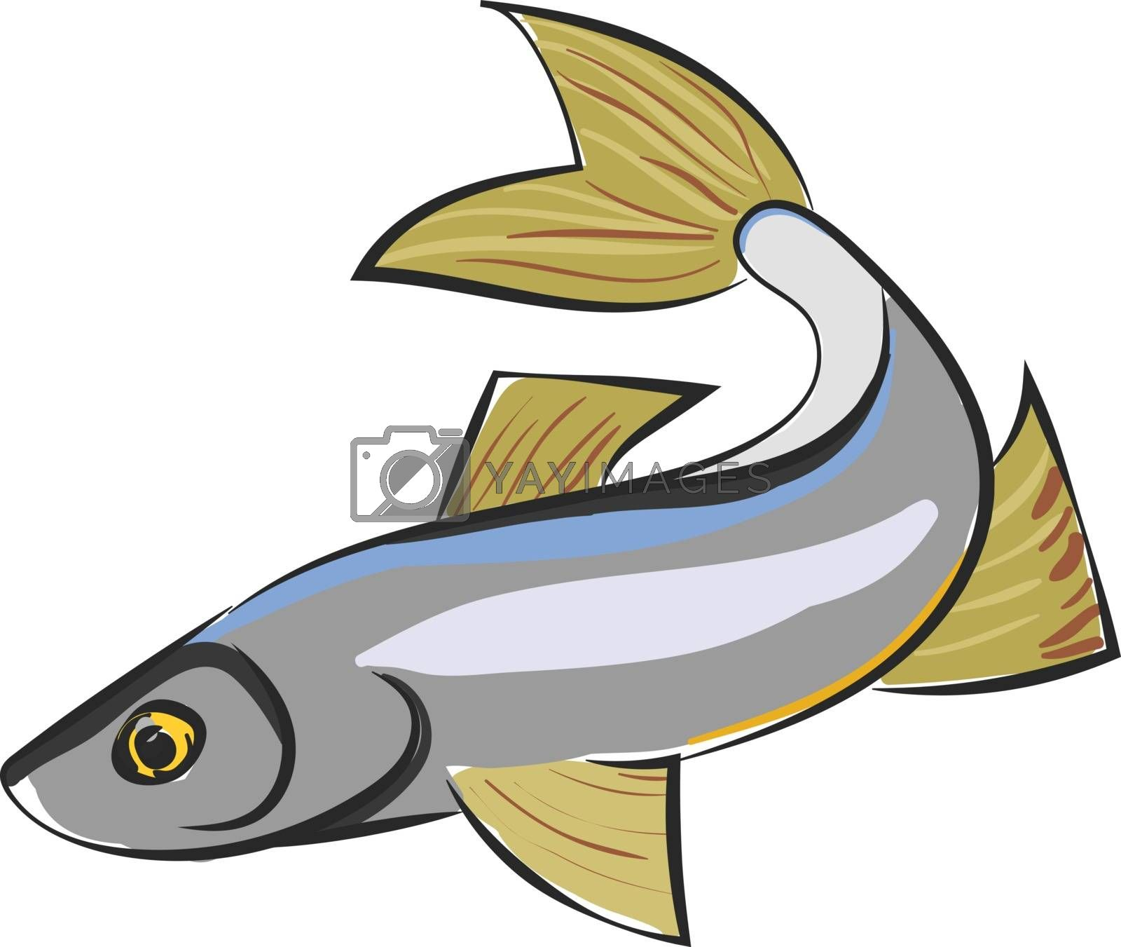 Royalty free image of Clipart of a sig fish vector or color illustration by Morphart
