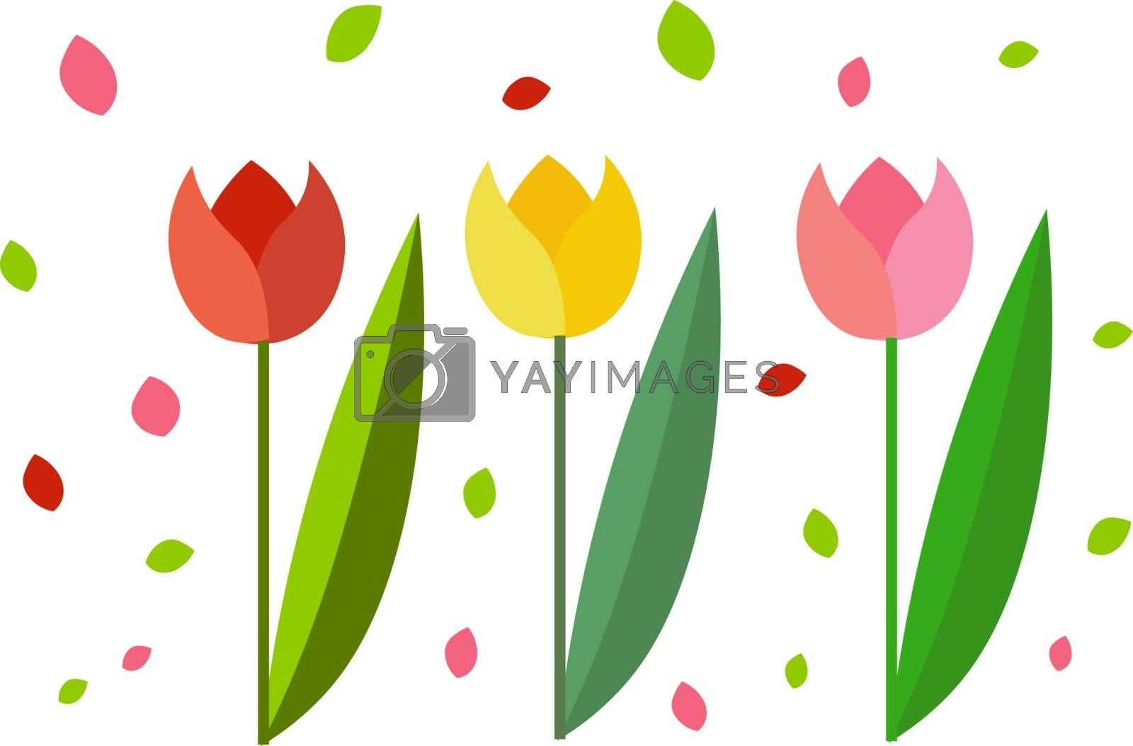 Royalty free image of Clipart of three beautiful tulips/Colorful flowers vector or col by Morphart