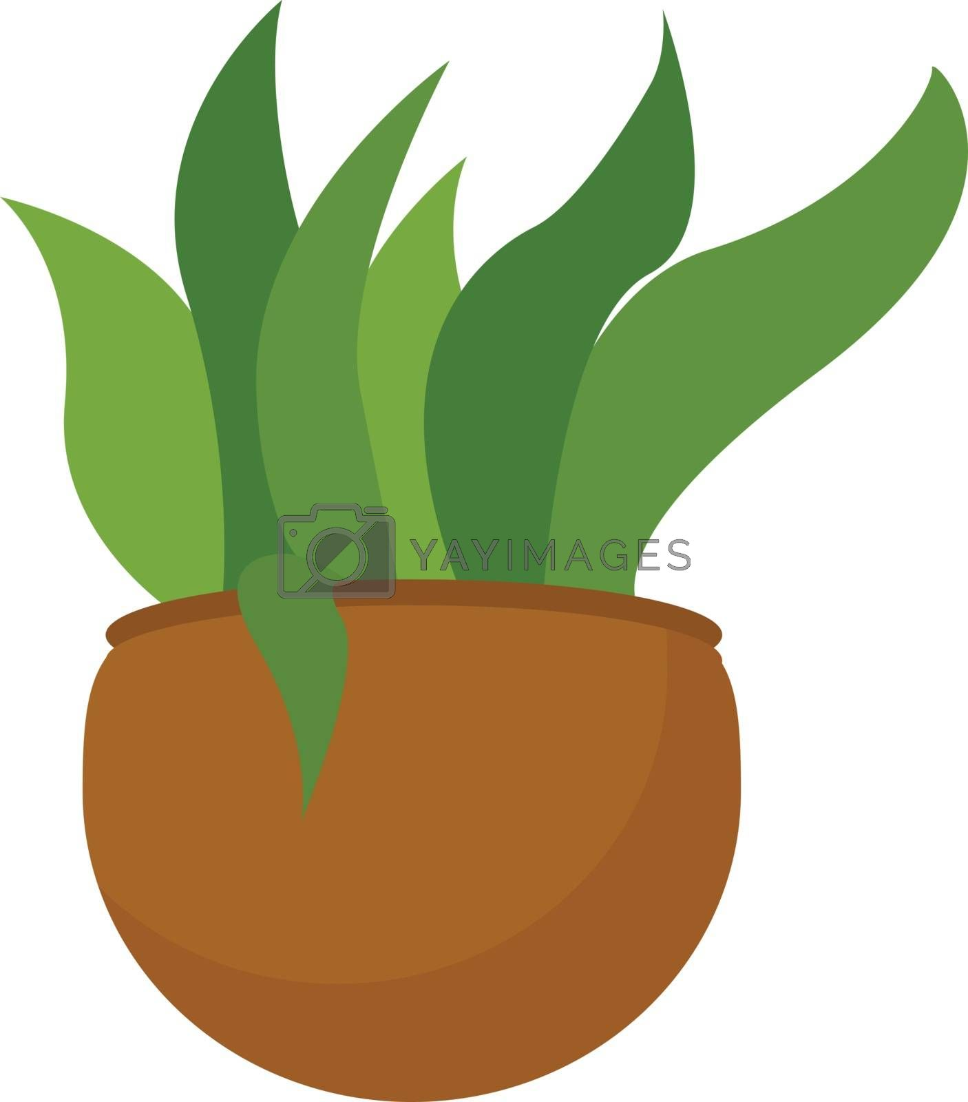 Royalty free image of Clipart of a green plant potted on a brown earthen pot vector or by Morphart