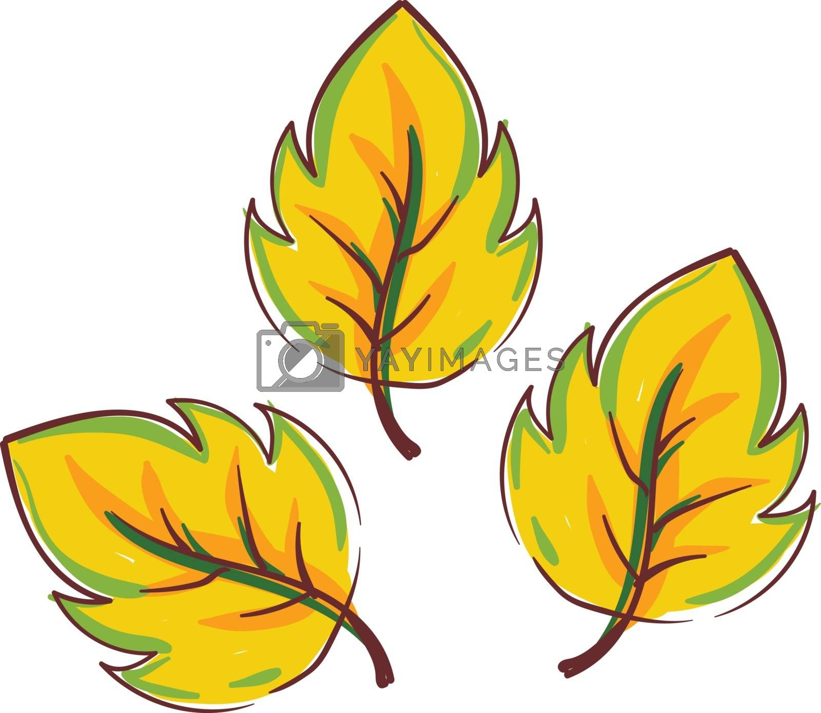 Royalty free image of Clipart of yellow autumn leaves vector or color illustration by Morphart