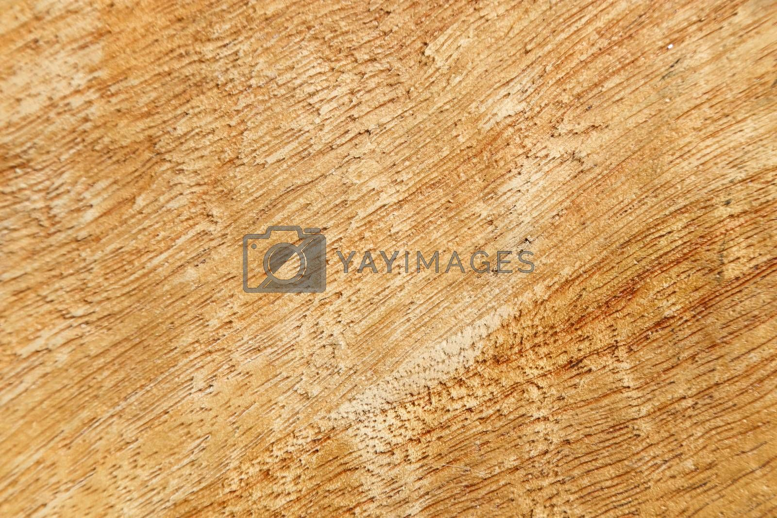 Royalty free image of Wood texture with knots and detail on the wood grain by inspireme