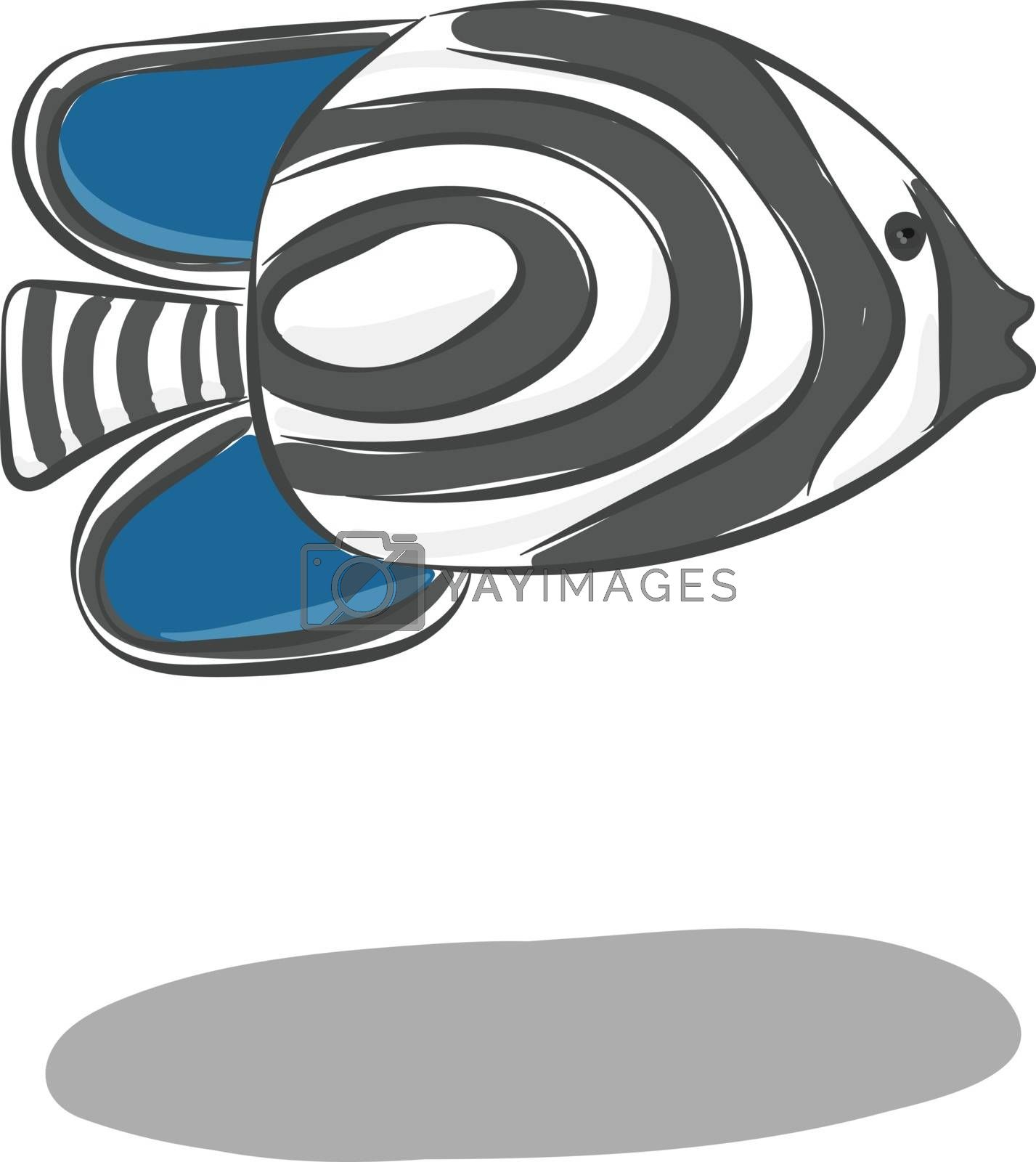 Royalty free image of Clipart of the zebra fish with black stripes vector or color ill by Morphart