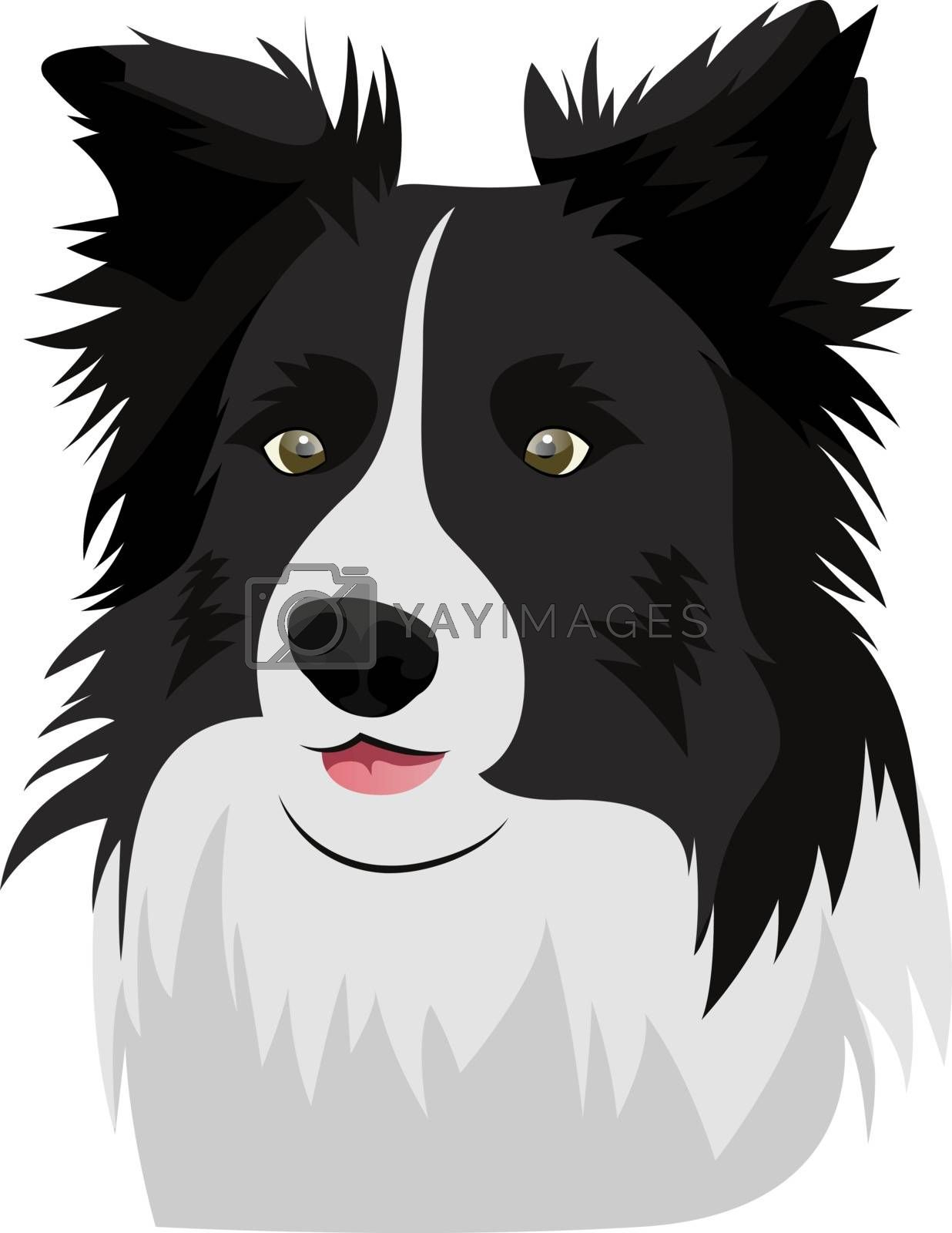 Royalty free image of Border Collie illustration vector on white background by Morphart