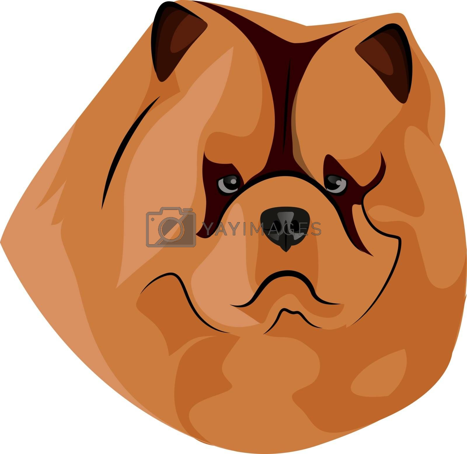 Royalty free image of Fat Chow Chow illustration vector on white background by Morphart