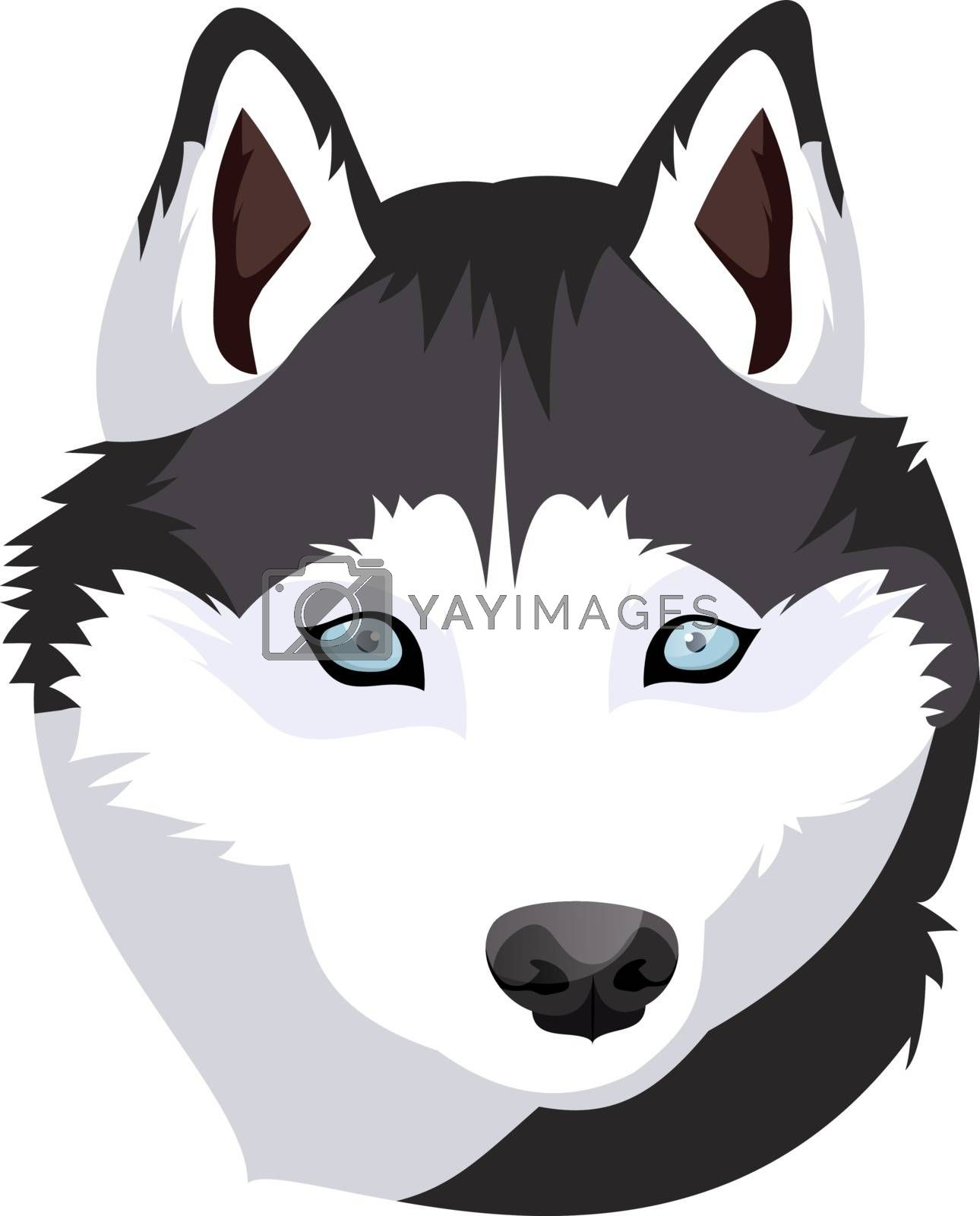 Royalty free image of Siberian Husky illustration vector on white background by Morphart
